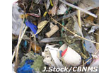 photo of plastic debris