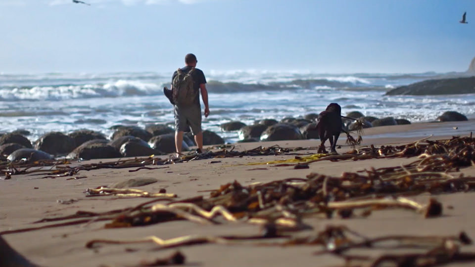 man and dog walking on the beach